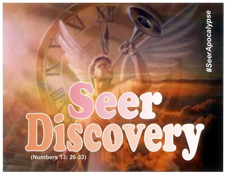 seer discovery